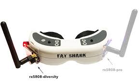 goggles-diversity
